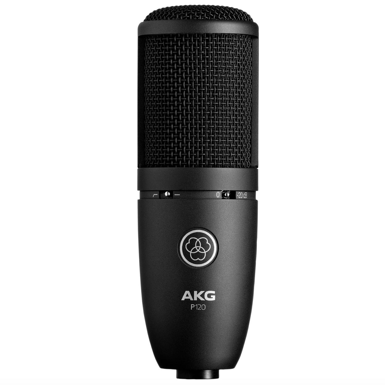 Купить AKG P120