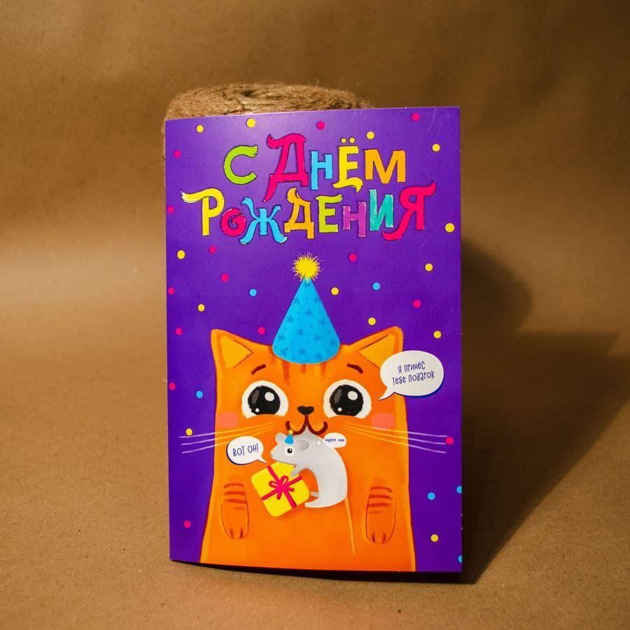 Купить Открытка «С Днем Рождения» котик с мышкой