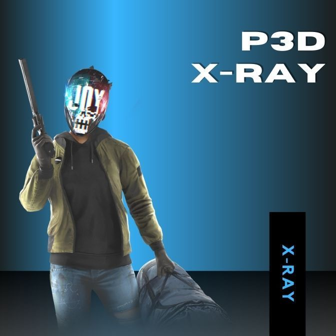 P3D X-Ray